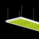 Intra Lighting Acousto Rectangle Moss Pendant