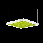 Intra Lighting Acousto Square Moss Pendant